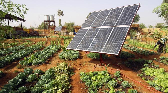 domrep-solarpanel