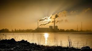 coal jan